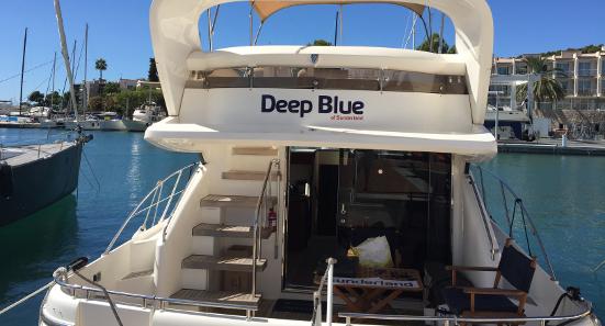 Contact Us Deep Blue Sea Training