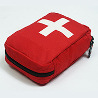 First Aid Theory Course